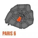 Ramonage à Paris 6ème