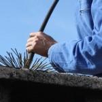 ramonage services